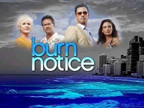 Burn-Notice-burn-notice-3866613-800-600.jpg